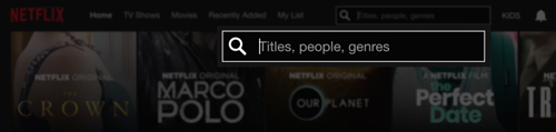 An example of a search bar that uses a good descriptive placeholder. This example was taken from netflix.