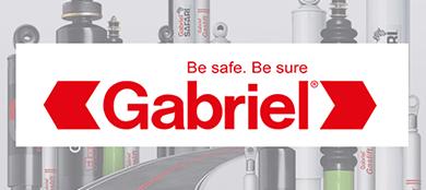 Gabriel client image small